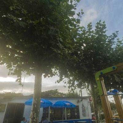 Panorama_02.jpg